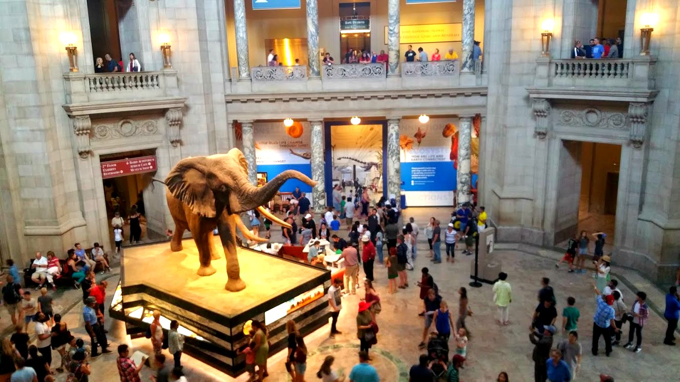 Best 7 Must See Washington DC Museums